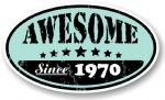 Distressed Aged Awesome Since 1970 Oval Design External Vinyl Car Sticker 70x120mm